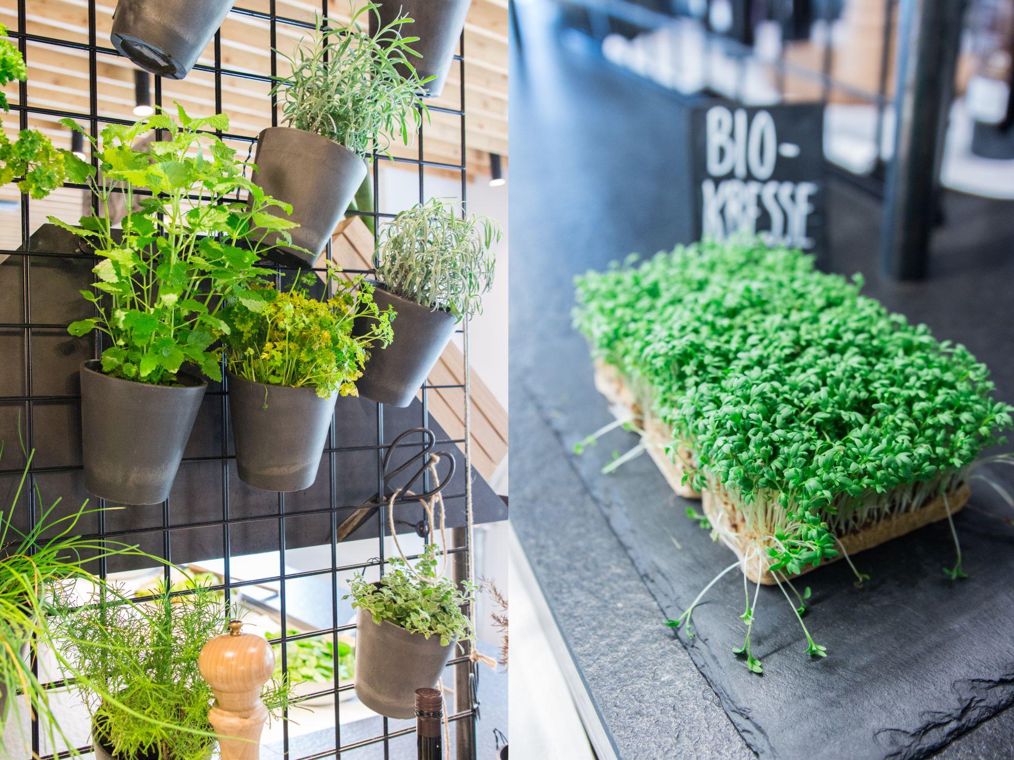 Forsthofgut Küche Genussmarkt Schätze aus meiner Küche Wellnesshotel Leogang