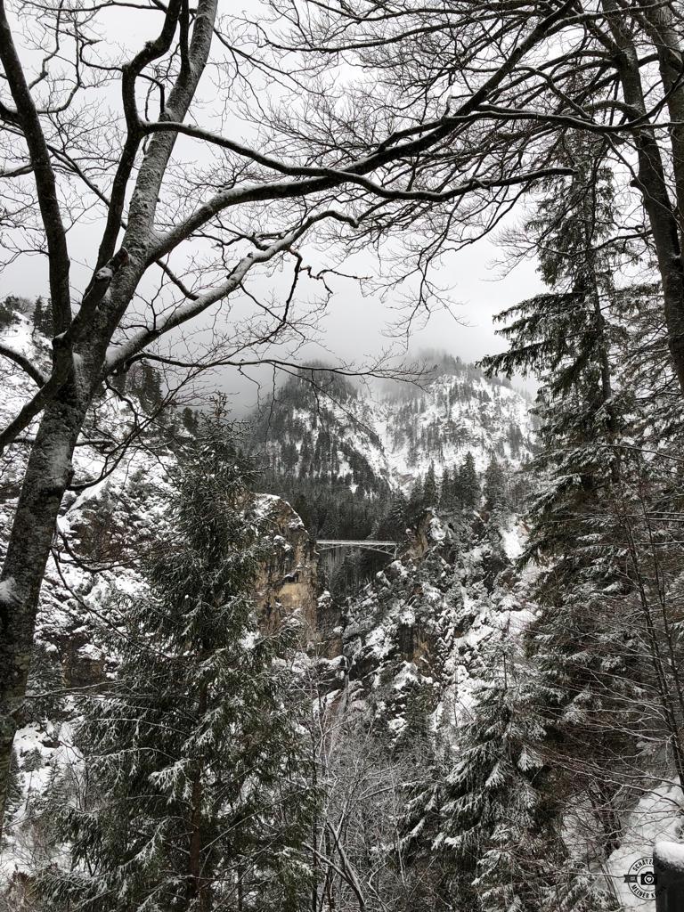 Schloss Neuschwanstein Marienbrücke Schätze aus meiner Küche Winterwald
